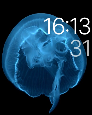 watchOS Watch Face